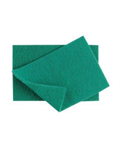caterers scourer